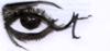 Declin_doeil_par_mathilde_tixier